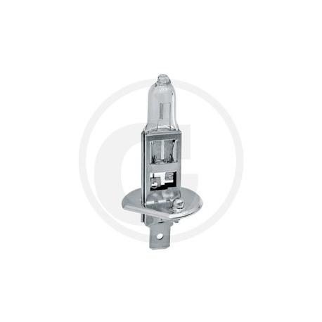 01 Philips Halogeenlamp, H1