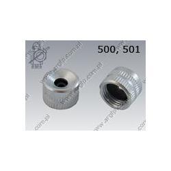 Nozzle  501 M10×1    AN 479