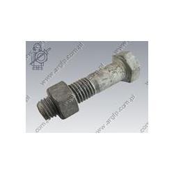 Hex bolt  w. nut M18×80-8.8 tZn  DIN 931