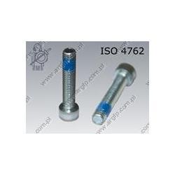 Hex socket head cap screw  FT M 6×10-8.8 zinc plated DIN 267-28 KLF ISO 4762