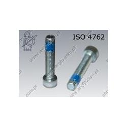 Hex socket head cap screw  FT M 5×10-8.8 zinc plated DIN 267-28 KLF ISO 4762